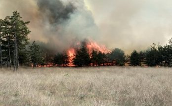пожар в Запорожской области