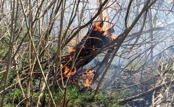 пожары на природе