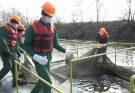 Запорожской АЭС рыб